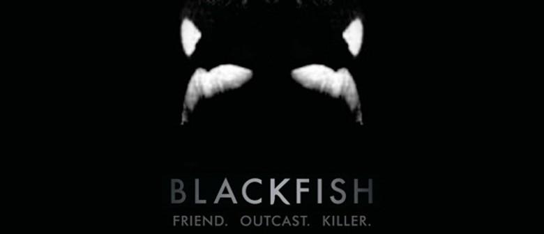 MIFF Film Review: Blackfish