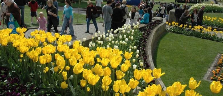 Spring Community Festival