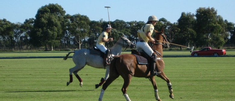 Yarra Valley Polo Day