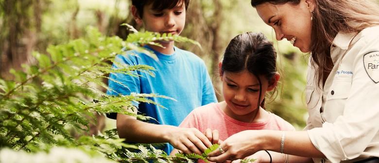Parks Victoria Junior Rangers Holiday Program