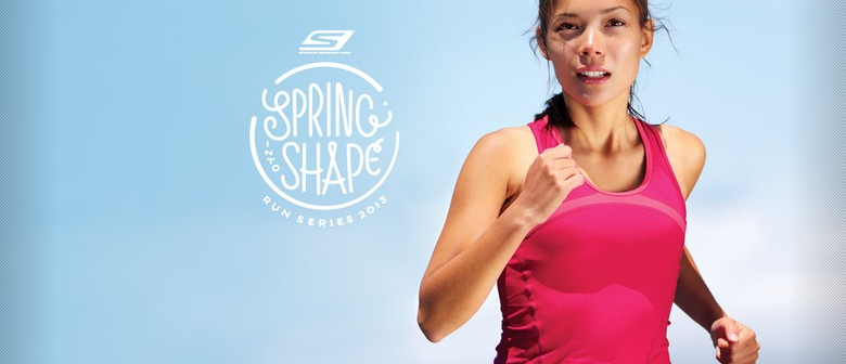 Skechers Spring into Shape Series