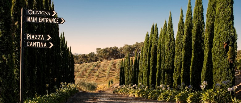 Mother's Day at Olivigna Estate