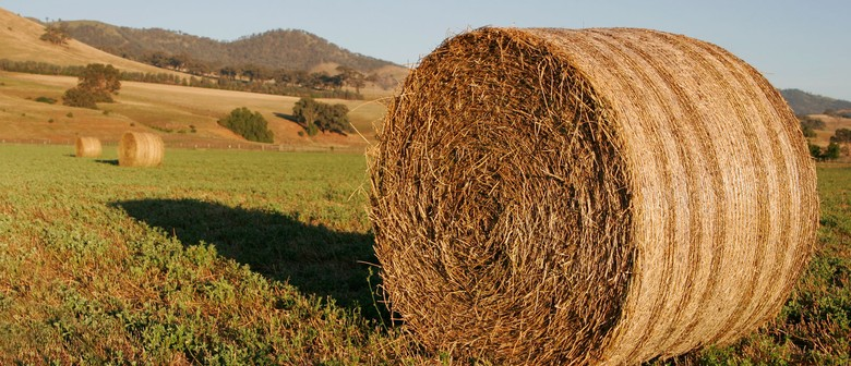 Buy A Bale Drought Fundraiser