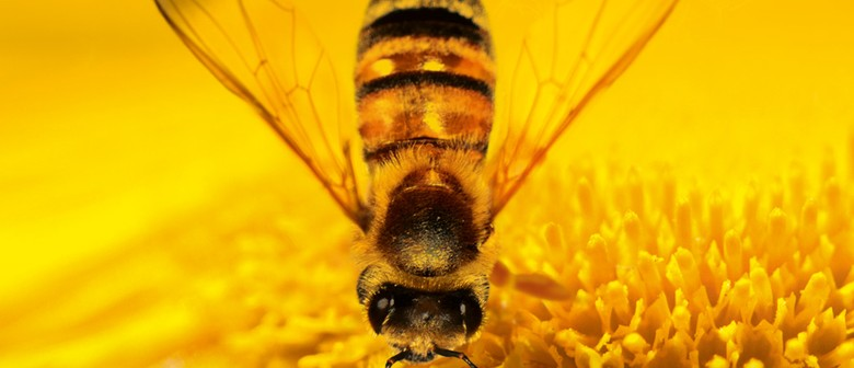 Empowered Living Workshop - How to help the bees