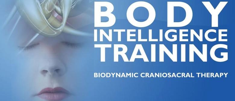 Craniosacral Therapy Diploma Training - Melbourne Seminar 1