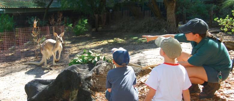 School Holidays at Perth Zoo