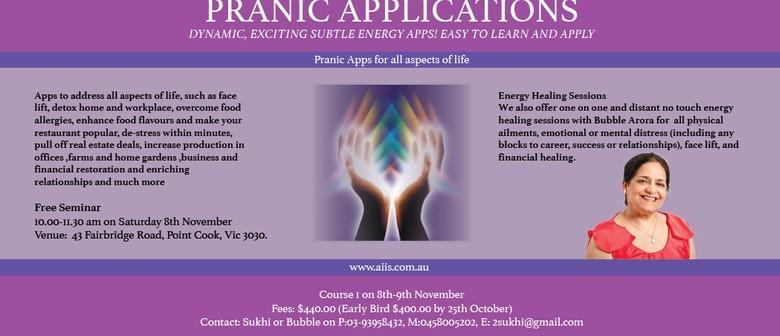 Pranic Applications Weekend Course & Seminar