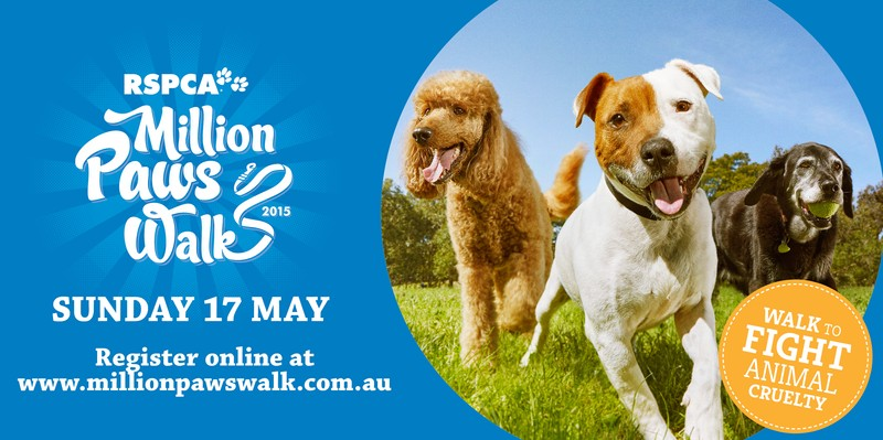 million paws walk - photo #44