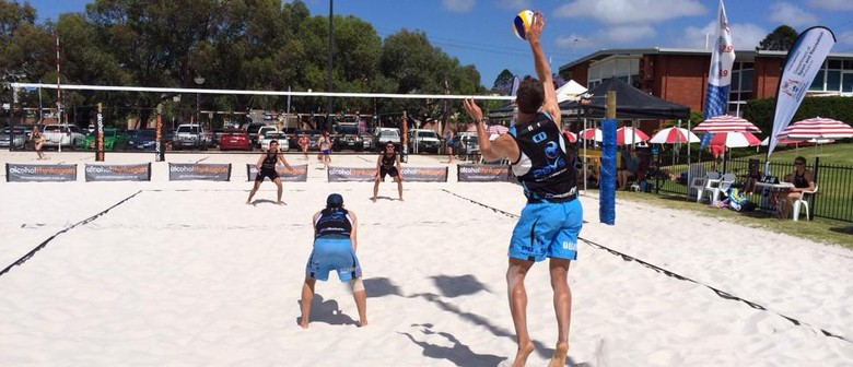 2015 Social Beach Volleyball- Spring