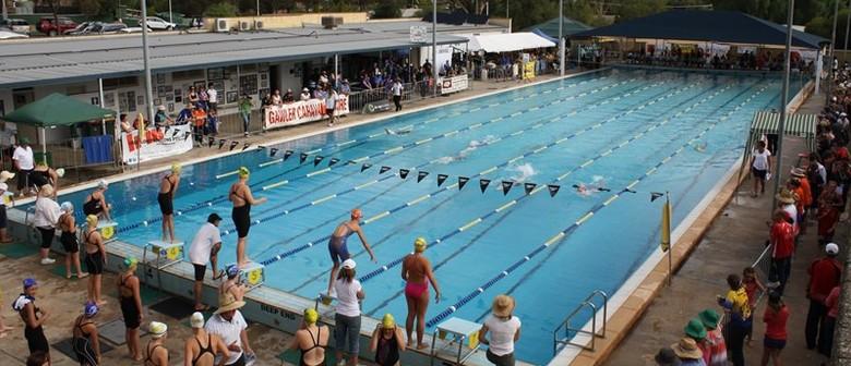 Masters Swimming SA Summer Pool Series - Meet #2