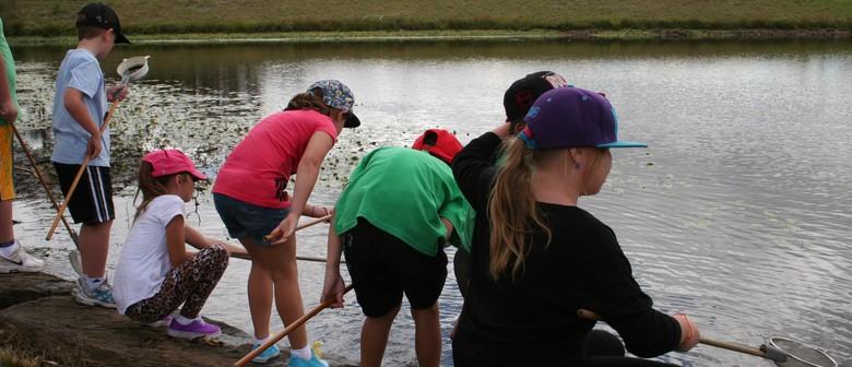 Water Wildlife Explorers