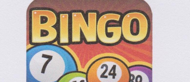 Night Time Bingo