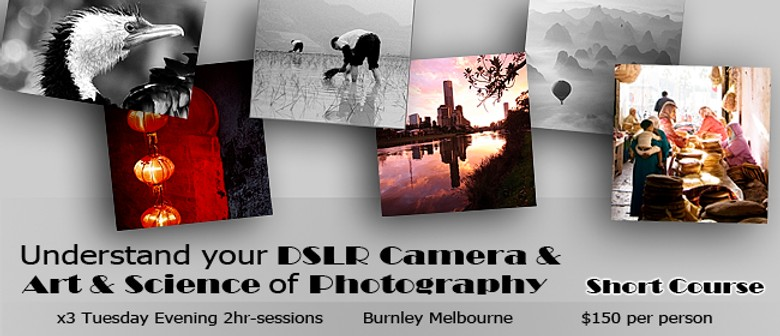 short course in digital photography pdf
