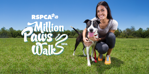 million paws walk - photo #28