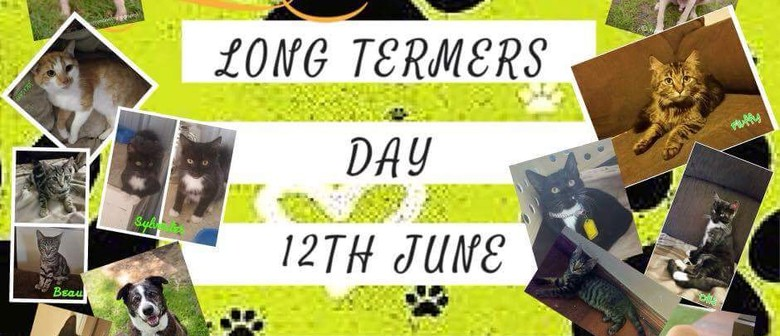Long Termers Adoption Day - SA Dog Rescue