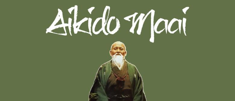 Aikido - Martial Arts