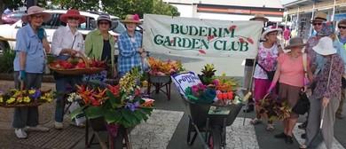 Buderim Garden Festival 2017