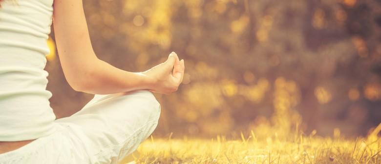 Urban Meditation Retreat