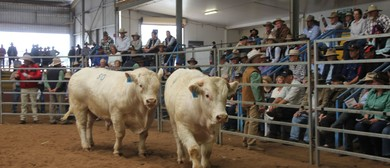 2017 Queensland Beef Expo and Farming Field Days
