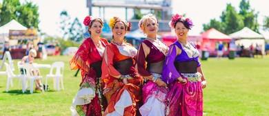 Multicultural Fiesta 2017