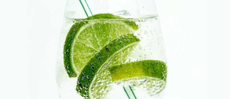 Pure Imagination – The Science of Gin