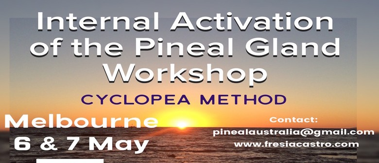 Internal Activation of The Pineal Gland Workshop