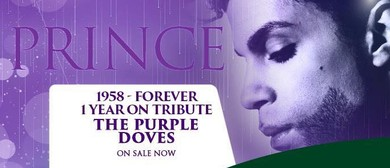 The Purple Doves - Prince Band Tribute