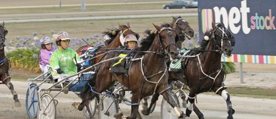 Harness Racing – Race Meeting