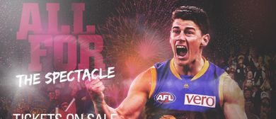 Brisbane Lions V Western Bulldogs