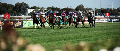 Winter Stakes Day