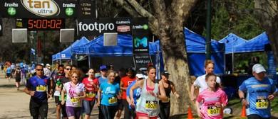 The Tan – Urban Trail Running Festival