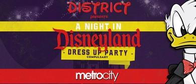 A Night In Disneyland
