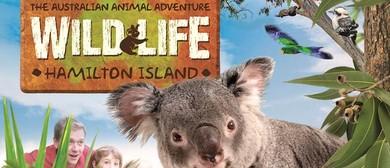 Wild Life Hamilton Island's Experiences