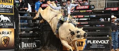Iron Cowboy II – PBR Australia
