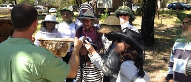 Learn Natural Beekeeping