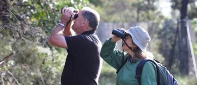 Calling All Bird-Lovers – Spring Bird Census 2017