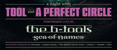 A Night of Tool and A Perfect Circle – Tribute