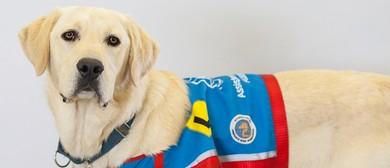 Assistance Dogs Australia's Sydney Graduation