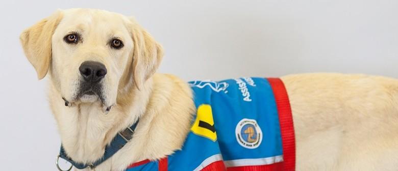Assistance Dogs Australia's Brisbane Graduation