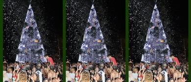 Lighting Up Cooroy's Christmas Tree