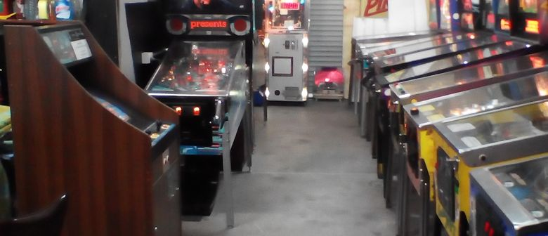 Pinball and Arcade Come and Play Session