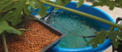 Aquaponics 2-Day Course