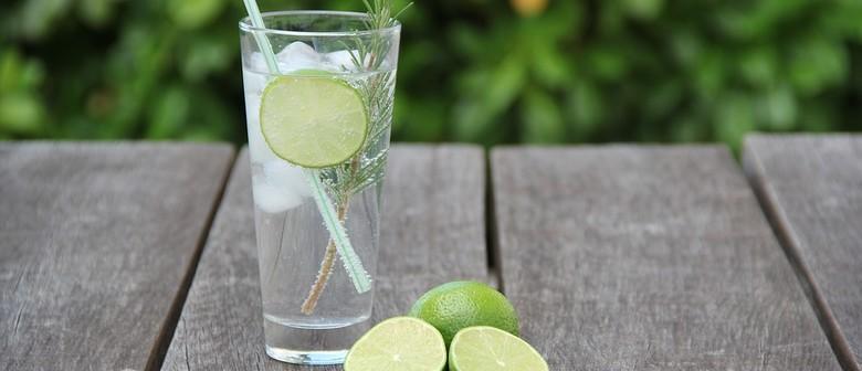 Gin and Vodka Festival