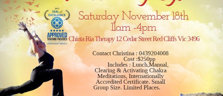 12 Chakra Healing System