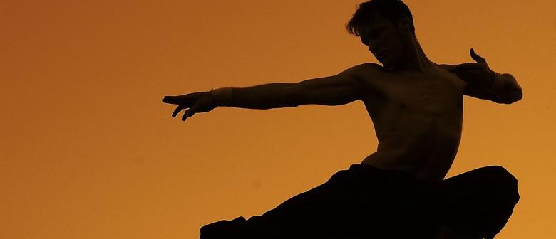 Martial Arts Meets Dance