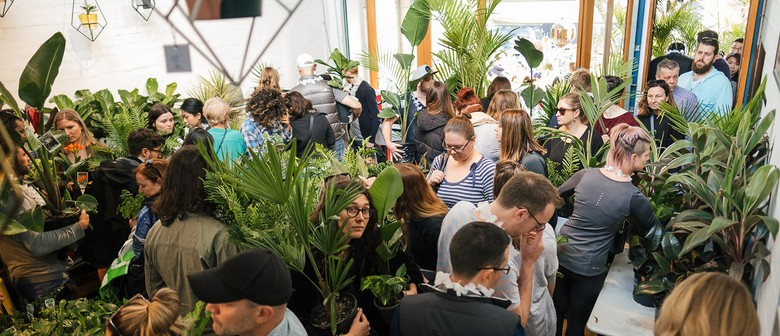 Rumble In the Jungle – Indoor Plant Warehouse Sale