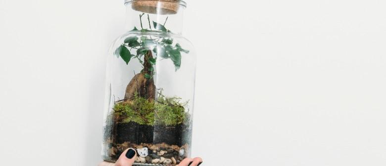 Tarkine Forest Terrarium Workshop