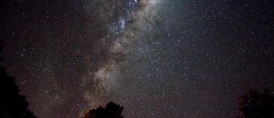 Stars Over the Garden