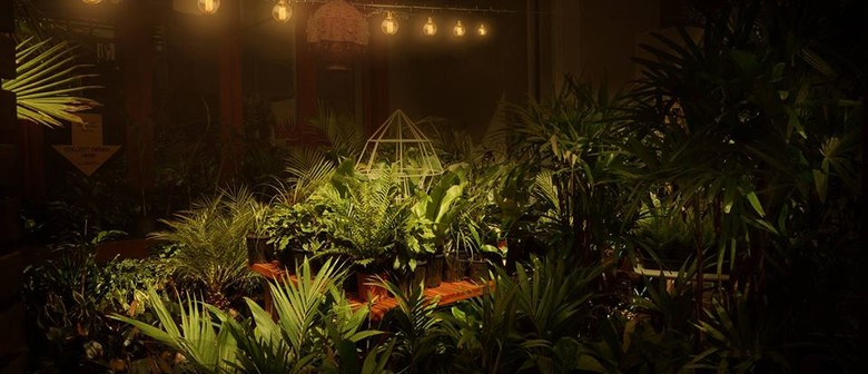 Twilight Indoor Plant Warehouse Sale – Jungle by Moonlight