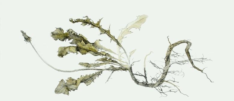 Botanical Illustration Workshop With Mirra Whale